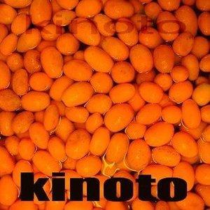 Kino4 To